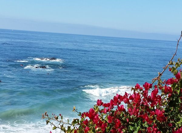 LOWER BLUEBIRD  Laguna Beach Real Estate